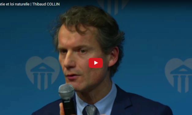 Démocratie et loi naturelle |  Thibaud COLLIN