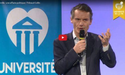 La famille : une affaire politique | Thibaud COLLIN